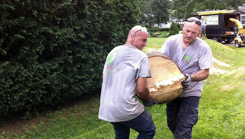 notre équipe d'entretiens d'arbres